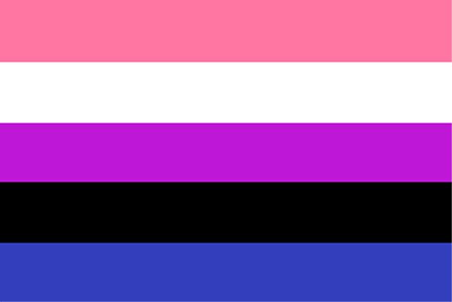 Genderfluidity_Pride_Flag gender labels