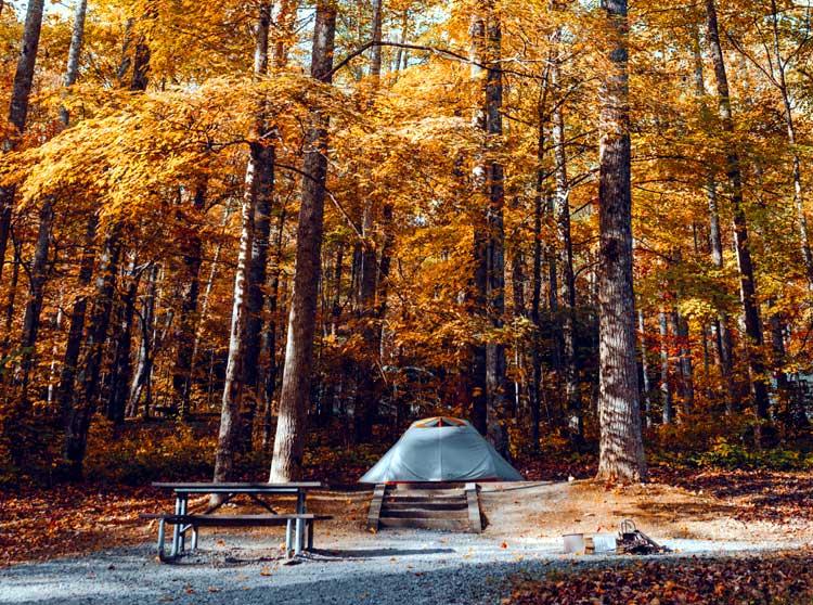 autumn camping tent