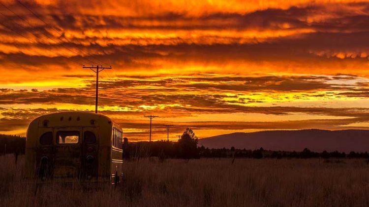 school bus driving into the sunrise sunset